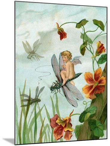 Winged Fairy Riding a Dragonfly Near Nasturtium Flowers, 1882--Mounted Giclee Print