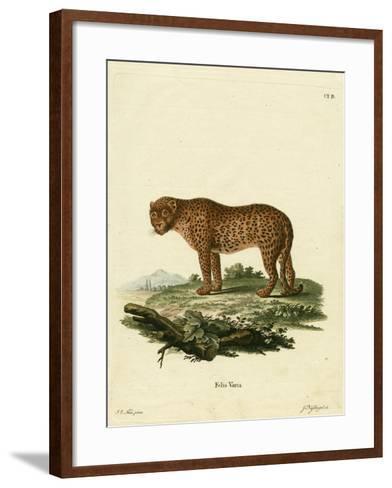 Panther--Framed Art Print