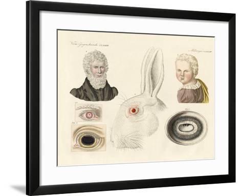 Albinos--Framed Art Print
