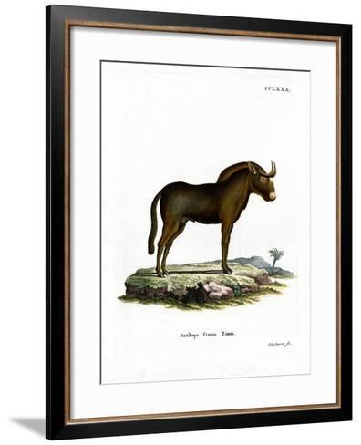 Gnu--Framed Art Print