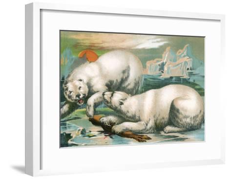 Two Polar Bears Fighting over Seal, 1884--Framed Art Print