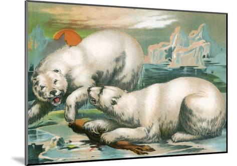 Two Polar Bears Fighting over Seal, 1884--Mounted Giclee Print