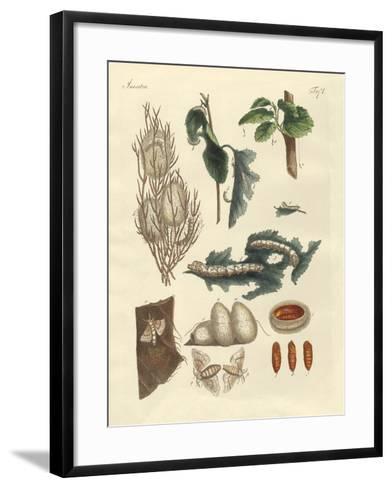 The Silkworm--Framed Art Print