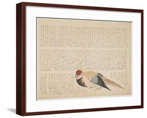 Pheasant, C.1818-29--Framed Art Print