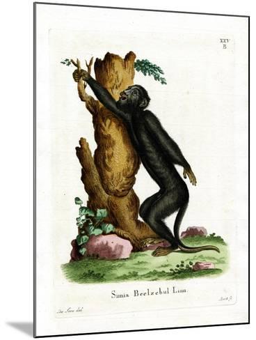 Black Howler--Mounted Giclee Print