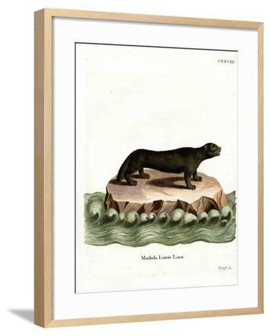 Sea Otter--Framed Art Print