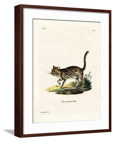 Marbled Cat--Framed Art Print