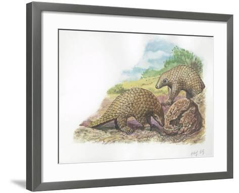 Tree Pangolins Manis Tricuspis Catching Ants--Framed Art Print