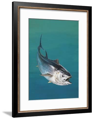 Close-Up of an Atlantic Bluefin Tuna (Thunnus Thynnus)--Framed Art Print