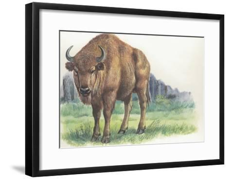 Close-Up of a Wisent Standing in the Forest (Bison Bonasus)--Framed Art Print