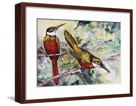 Rufous-Tailed Jacamar (Galbula Ruficauda), Galbulidae--Framed Art Print