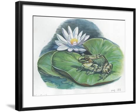 Edible Frog Rana Esculenta or Pelophylax Esculentus--Framed Art Print
