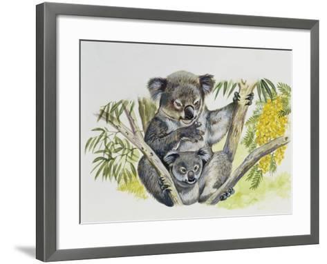 Koala Doe (Phascolarctos Cinereus) with Joey, Phascolarctidae--Framed Art Print
