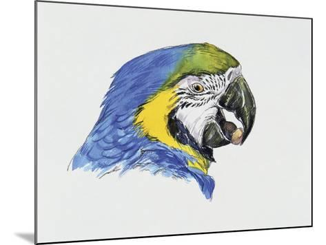 Close-Up of a Blue-And-Yellow Macaw (Ara Ararauna)--Mounted Giclee Print