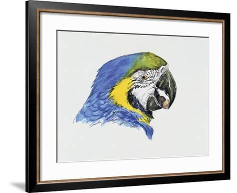 Close-Up of a Blue-And-Yellow Macaw (Ara Ararauna)--Framed Art Print