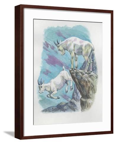Close-Up of Two Mountain Goats (Oreamnos Americanus)--Framed Art Print