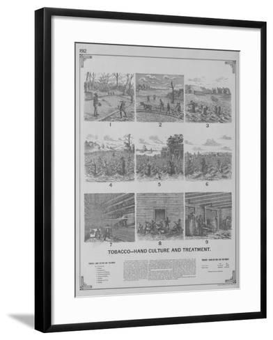 Tobacco - Hand Culture and Treatment--Framed Art Print
