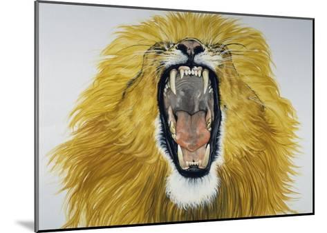 Lion (Phantera Leo), Felidae--Mounted Giclee Print