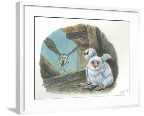Barn Owl Tyto Alba Bringing Food to Chicks--Framed Art Print