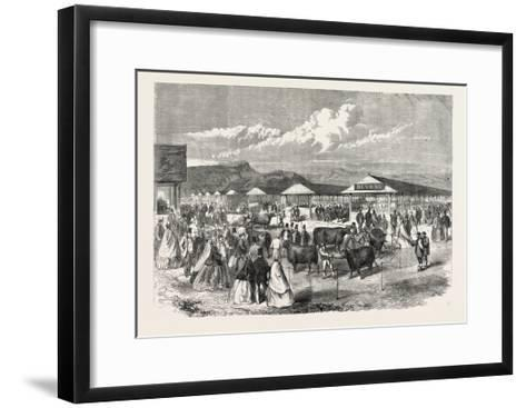 Judging the Cattle at the Plymouth Agricultural Show, UK, 1865--Framed Art Print