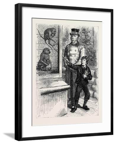 At the Zoological Society's Gardens in London: the Monkeys 1880--Framed Art Print