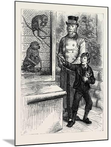 At the Zoological Society's Gardens in London: the Monkeys 1880--Mounted Giclee Print