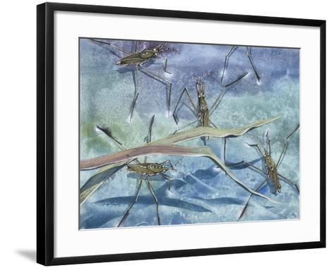 Insects--Framed Art Print