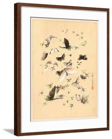 Butterflies and Moths, Between 1800 and 1850--Framed Art Print