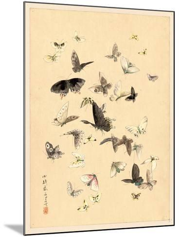 Butterflies and Moths, Between 1800 and 1850--Mounted Giclee Print