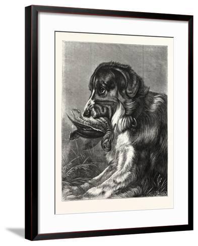 Woodcock-Shooting, Hunt, Hunting, Dog, Bird--Framed Art Print