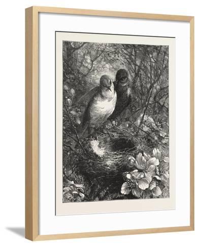 The First Nest, 1876, Bird, Birds, Spring, Nature--Framed Art Print