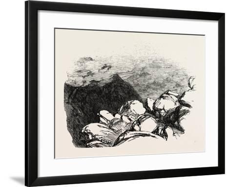 Part of Styhead Pass, Lake District, UK--Framed Art Print