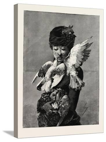 Lady and Pigeons, Fashion, 1882--Stretched Canvas Print