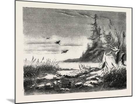 Ambush for Duck Shooting, 1882--Mounted Giclee Print
