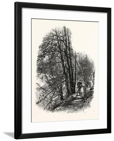 In Cliefden Woods, UK--Framed Art Print