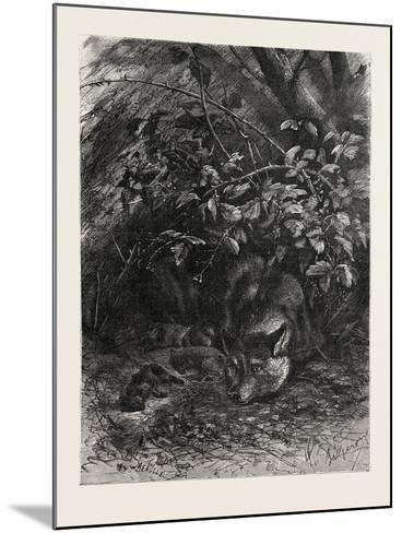 The Wolf in its Lair, 1882--Mounted Giclee Print