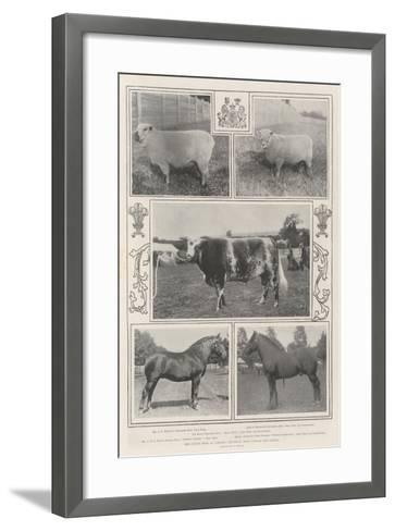 The Cattle Show at Cardiff, the Royal Prize Winner and Others--Framed Art Print