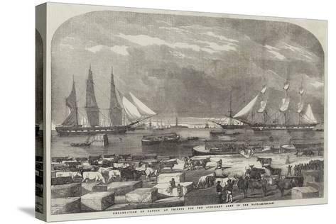 Embarkation of Cattle at Trieste for the Auxiliary Army in the East--Stretched Canvas Print