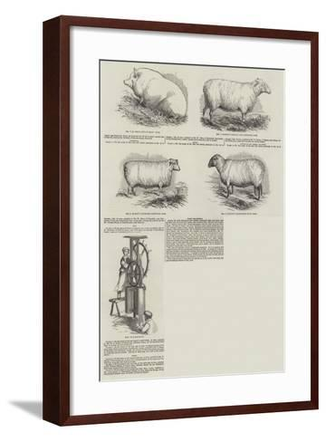 Southampton Meeting of the Royal Agricultural Society of England--Framed Art Print