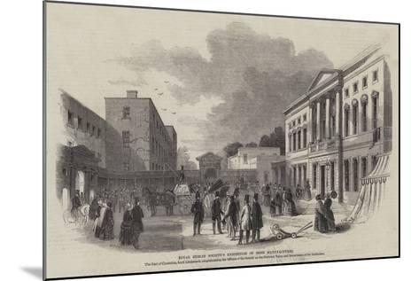Royal Dublin Society's Exhibition of Irish Manufactures--Mounted Giclee Print