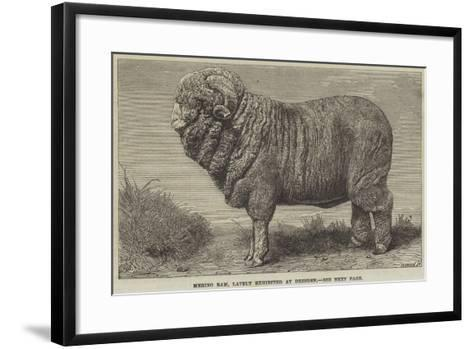 Merino Ram, Lately Exhibited at Dresden--Framed Art Print