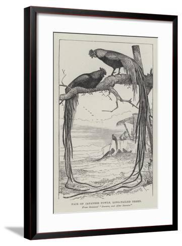 Pair of Japanese Fowls, Long-Tailed Breed--Framed Art Print