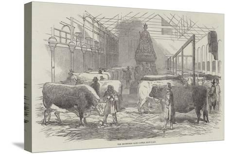 The Smithfield Club Cattle Show-Yard--Stretched Canvas Print
