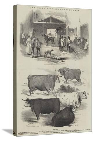 The Smithfield Club Cattle Show--Stretched Canvas Print