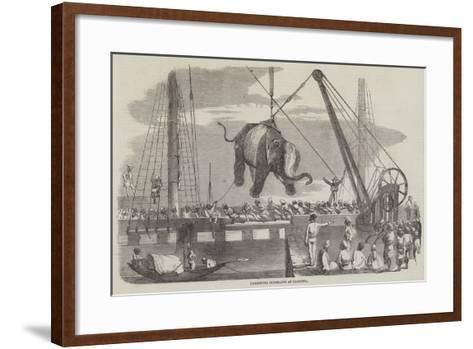 Unshipping Elephants at Calcutta--Framed Art Print