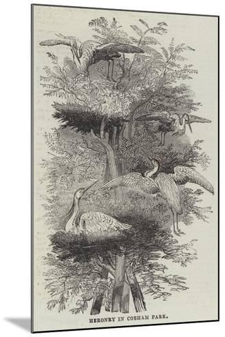 Heronry at Cobham Park--Mounted Giclee Print