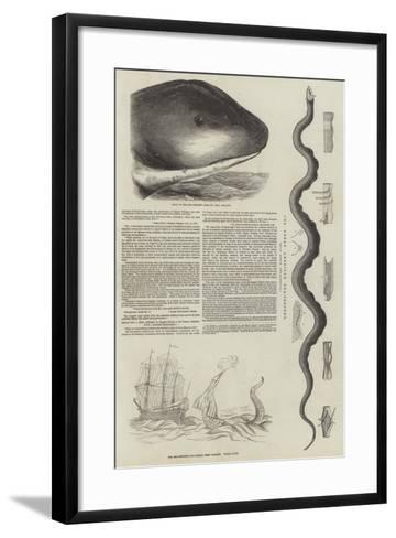 The Great Sea-Serpent--Framed Art Print