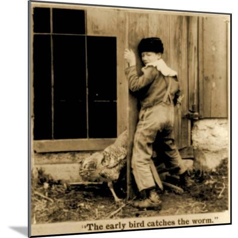 Detail of The Early Bird Catches the Worm Stereoscopic Card C.1900--Mounted Giclee Print