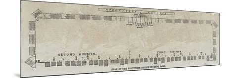 Plan of the Volunteer Review in Hyde Park--Mounted Giclee Print