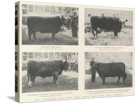 The Birmingham Fat Stock Show, Royal and Other Prize Winners--Stretched Canvas Print